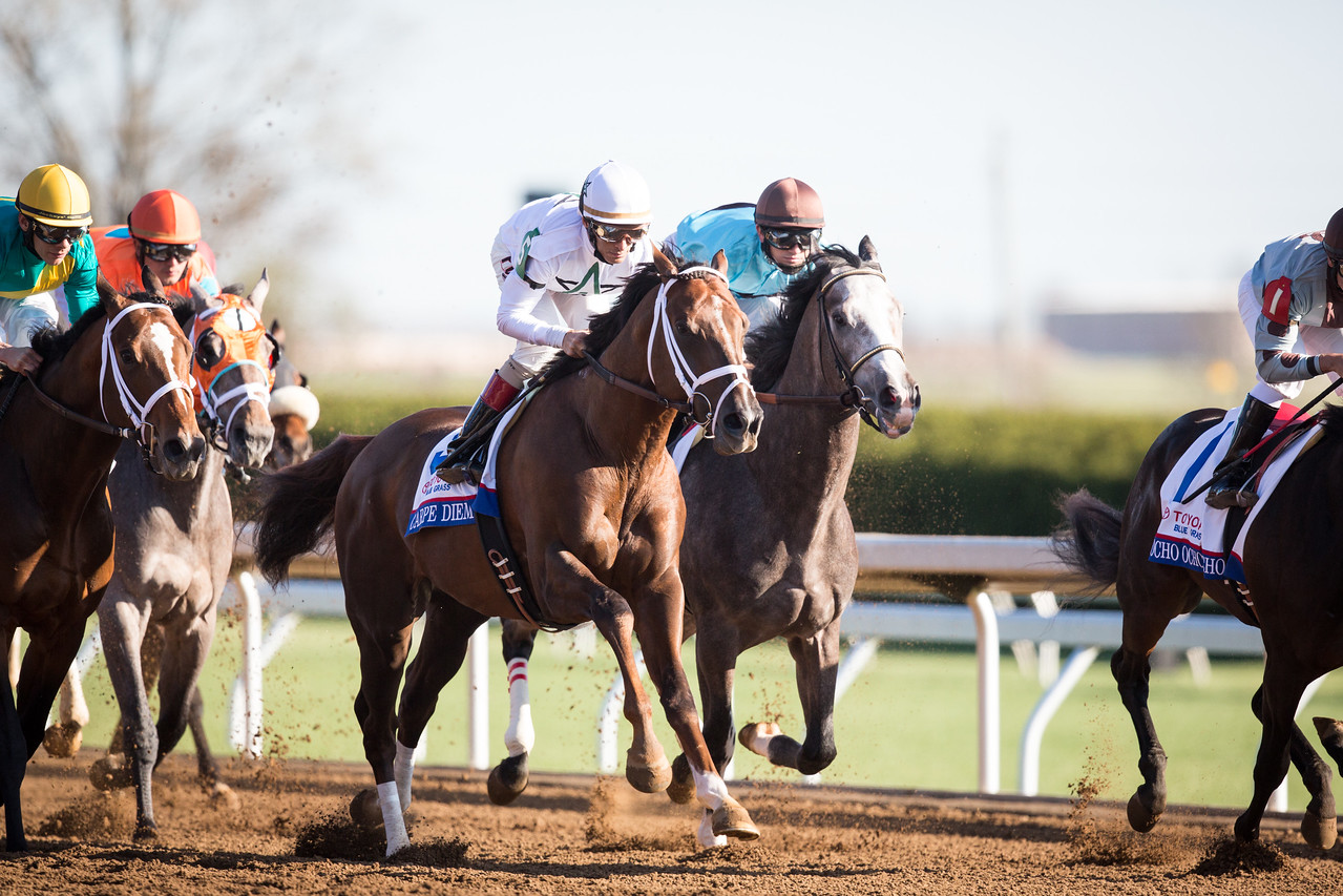 Carpe Diem (Giant's Causeway) wins The Bluegrass Stakes (G1) at Keeneland on 4.4.2015. John Velazquez up, Todd Pletcher trainer, Winstar and Stonestreet Stables owners.
