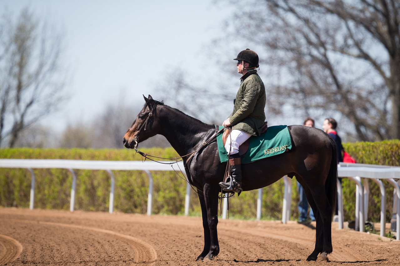 Keeneland outrider keeping watch on the activities at the track.