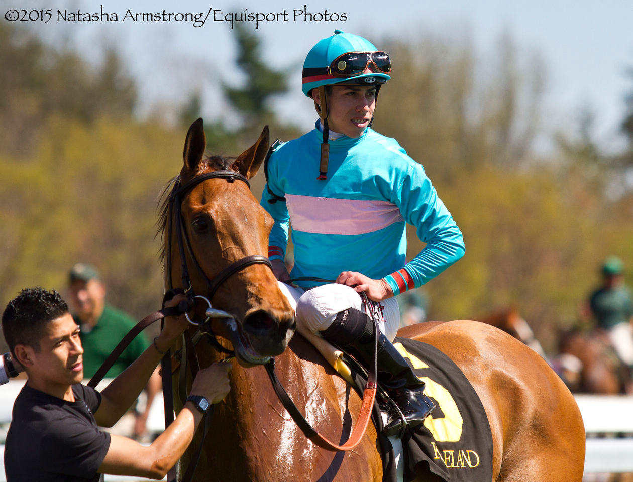 Lady Eli (Divine Park)  Irad Ortiz, Jr. up, wins the Gr.3 Appalachian Stakes at Keeneland on 4.12.15  Trainer: Chad Brown  Owner: Sheep Pond Partners