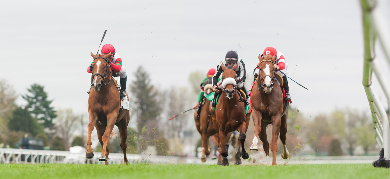 Night Prowler (Giant's Causeway), Javier Castellano up, wins the Transylvania at Keeneland 4.15.15. Trainer: Chad Brown, Owner: Paul Pompa.