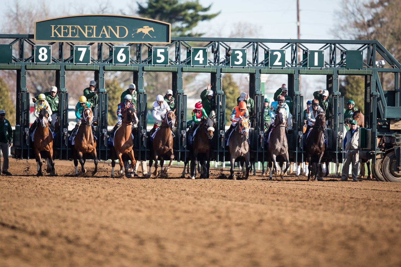 The start of the Bluegrass Stakes at Keeneland on 4.4.2015.