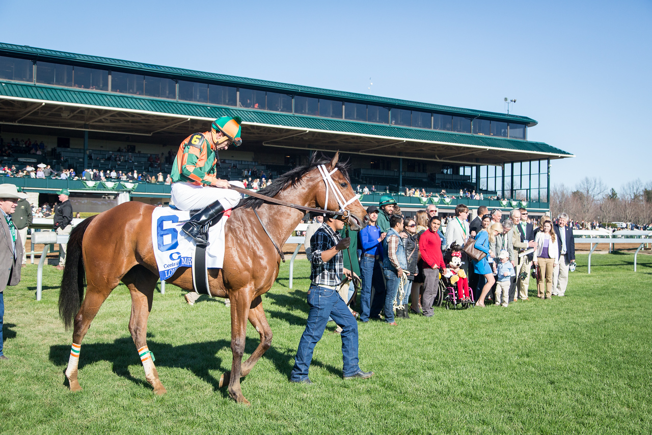 Lovely Maria (Majesticperfection) wins the Ashland Stakes (G1) at Keeneland on 4.4.2015. Kerwin Clark up, Larry Jones trainer, Brereton Jones owner.