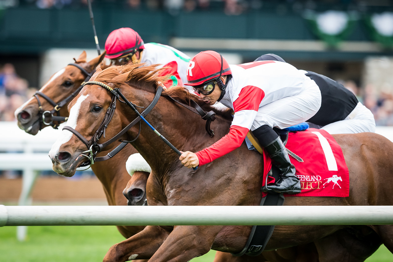 Luck of the Kitten, and Mike Smith, run second in the Transylvania at Keeneland 4.15.15.