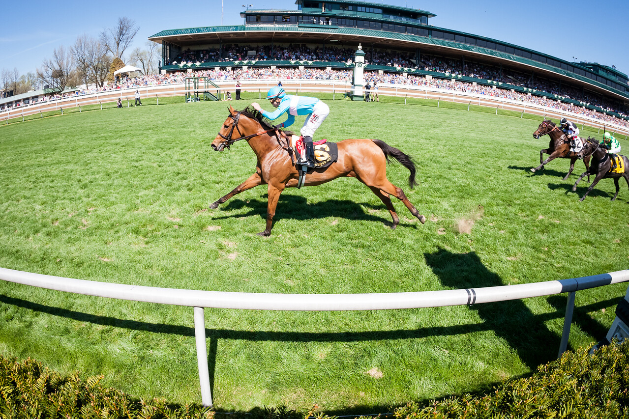 Lady Eli (Divine Park), Irad Ortiz up, wins the G3 Appalachian at Keeneland 4.12.15. Trainer: Chad Brown, Owner: Sheep Pond Partners.