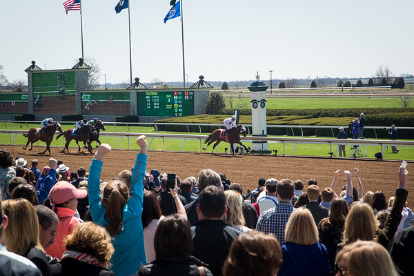 A good crowd for racing on Bluegrass Stakes Day.