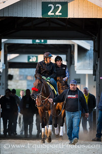 Nyquist works at Keeneland 4.15.16.