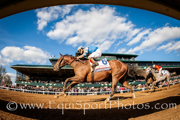 Brody's Cause (Giant's Causeway) wins the Bluegrass Stakes at Keeneland on 4.9.2016. Luis Saez up, Dale Romans trainer, Albaugh Family Stables owner.
