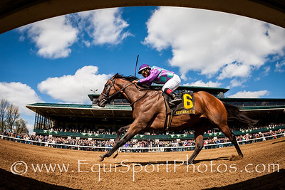 Ami's Flatter (Flatter) wins the Commonwealth (G3) at Keeneland on 4.9.2016. Martin Garcia up, Josie Carroll trainer, Ivan Dalos owner.