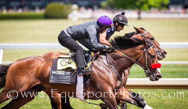 Nyquist overtakes stablemate, Ralis, in the turn during an afternoon work at Keeneland before several thousand fans.