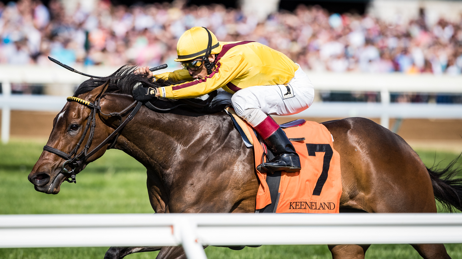 Lady Aurelia (Scat Daddy), John Velazquez up, wins the Giant's Causeway Stakes at Keeneland 4.15.16. Wesley Ward trainer, Stonestreet Stables owner.