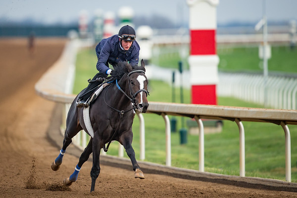 It's Your Nickel works at Keeneland on 4.2.2017. Kenny McPeek trainer.