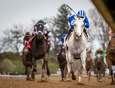 Almithmaar (Tapit), Jose Ortix up, wins a Maiden at Keeneland. Shadwell Stable, Owner. Kiaran P. McLaughlin, Trainer.