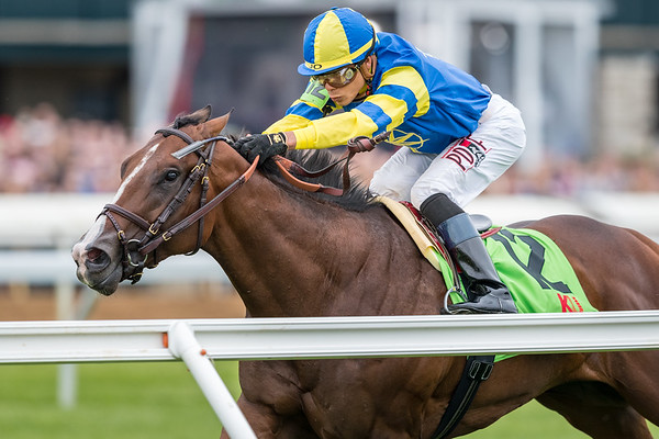 Analyze It (#12, Point of Entry) wins the Transylvania (G3) at Keeneland on 4.6.2018. Jose Ortiz up, Chad Brown trainer, William Lawrence owner.