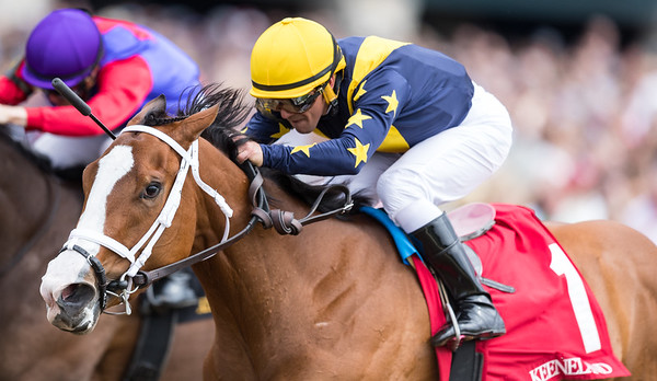 Covfefe (Into Mischief), Javier Castellano up, wins an Allowance at Keeneland 4.06.19. Brad Cox. trainer. LNJ Foxwoods owner.