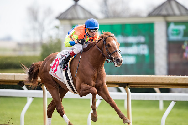 Bobby's Wicked One (Speightstown) wins the Commonwealth Stakes (G3) at Keeneland on 4.6.2019. Miguel Mena up, Al Stall Jr. trainer, Autumn Hill Farm owner.