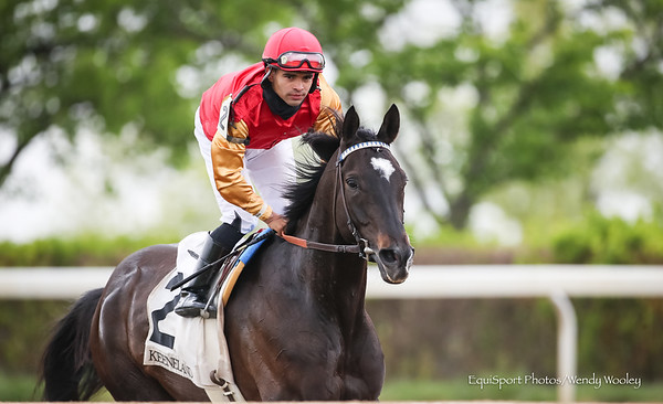 Say The Word (More Than Ready) wins the Elkhorn Stakes at Keeneland on 4.17.2021. Luis Saez up, P D'Amato trainer,  Agave Racing Stable (Mark Martinez) and Sam-Son Farm (Mark Samuel) owners.