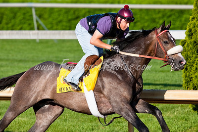 27 April 2009: Win Willy works at Churchill Downs in Louisville, Kentucky.