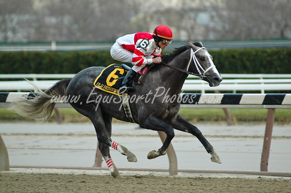 Old Fashioned (Unbridled's Song), Ramon Dominguez up, wins the Remson S. (G2) at Aqueduct 11.29.2008db ( Horse Racing Photos by EquiSport Photos )