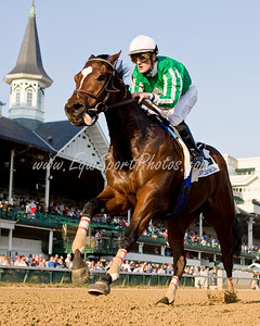 Capt. Candyman Can (Candy Ride, Arg.), Julien Leparoux up, wins the Iroquois S. (G3) at Churchill Downs 11.01.2008mw ( Horse Racing Photos by EquiSport Photos )
