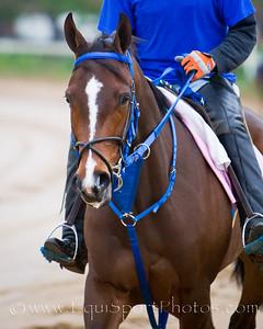 Jody Slew gallops at Churchill 4.26.2010