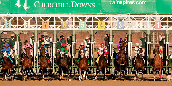Super Saver (#2, Maria's Mon), Calvin Borel up, wins the Ky. Jockey Club S. at Churchill Downs 11.28.2009 (Wendy Uzelac/EquiSport Photos) (EquiSport Photos)