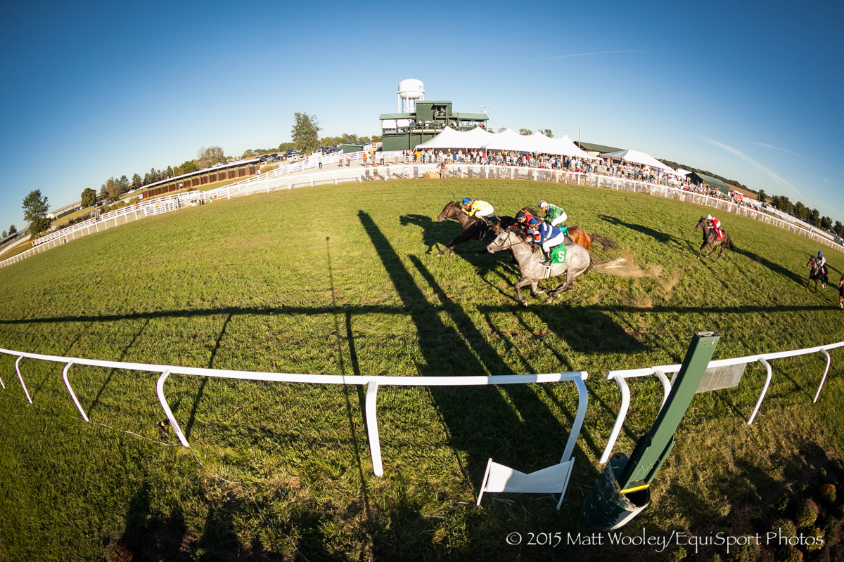 Sweet Luca (Candy Ride), Robby Albarado up, wins the Ky. Downs Turf Dash. Chris Block trainer, Fortino Inc owner.