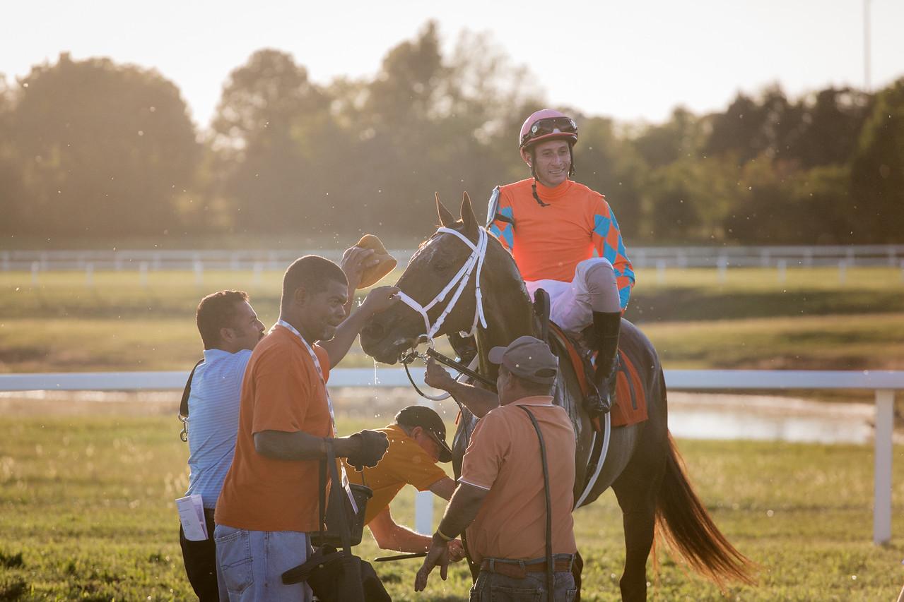 Da Big Hoss (Lemon Drop Kid) wins the Kentucky Cup (G3) at Kentucky Downs on 9.14.2015. Joe Rocco Jr. up, Mike Maker trainer, Skychai Racing, LLC owners.