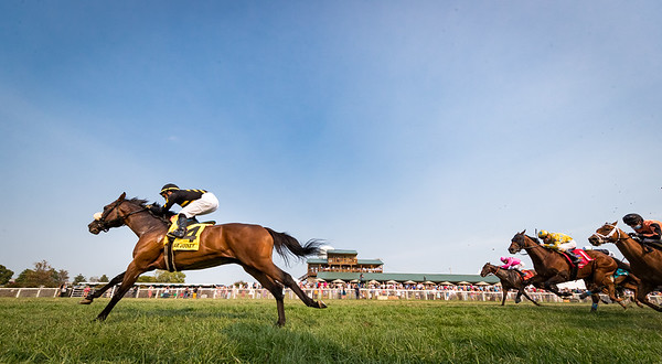 Gear Jockey (Twirling Candy) wins the FanDuel Turf Sprint (G3) a Win and You're In Turf Sprint division. Jose Lezcano up, Rusty Arnold trainer, Calumet Farm owner.