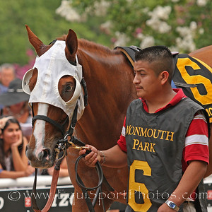Get Serious (City Zip) before the Oceanport Stakes at Monmouth Park 8/1/10.