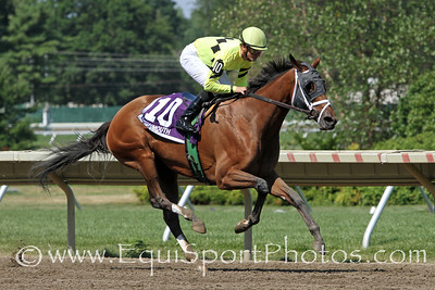 Quiet Giant (Giant's Causeway) and jockey Julien Leparoux win the Lady's Secret Stakes at Monmouth Park 7/31/11. Todd Pletcher trainer; Estate of Edward P Evans owner.