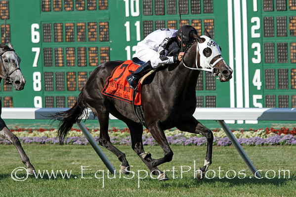 Romacaca (Running Stag) and jockey ET Baird win the Gr. III Taylor Made Matchmaker Stakes at Monmouth Park 7/31/11. Nick Canani trainer; Frank Calabrese owner.