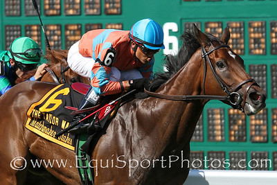 Laughing (IRE) (Dansili) and jockey Raphael Bejarano win the Taylor Made Matchmaker Stakes (Gr III) at Monmouth Park 7/29/12. Trainer: Alan Goldberg. Owner: Richard Santulli