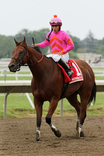 Immortal Eyes (Greatness) and jockey Paco Lopez win the Teddy Drone Stakes at Monmouth Park 7/28/13. Trainer: Damon Dilodovico. Owner: Robert Abbo Racing Stable LLC
