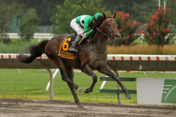 Exaggerator (Curlin) and jockey Kent Desormeaux win the Haskell Invitational (Gr I) at Monmouth Park 7/31/16. Trainer: Keith Desormeaux. Owner: Big Chief Racing LLC