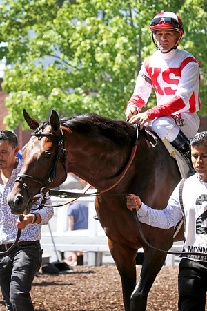 Money Multiplier (Lookin at Lucky) and jockey Javier Castellano win the Monmouth Stakes (Gr II) at Monmouth Park 7/30/17. Trainer: Chad Brown. Owner: Klaravich Stables & William Lawrence
