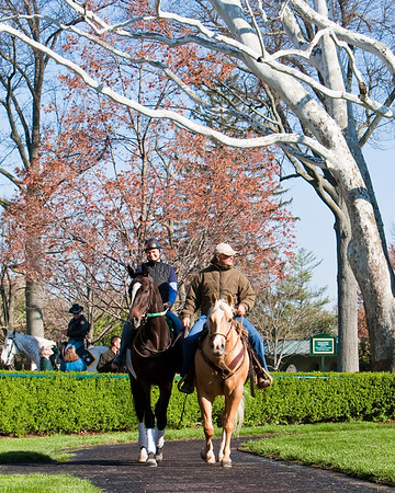 Hold Me Back, with Leana Willaford and Bill Mott, in the Keeneland paddock 4.04.2009 (EquiSport Photos)