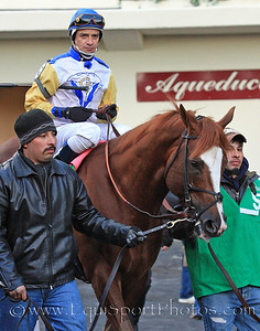 Jersey Town (Speightstown) and jockey Cornelio Velasquez go to the post for the Cigar Mile Handicap at Aqueduct 11/27/10 JH.