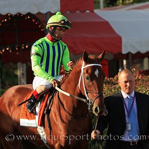 Wine Police (Speightstown) and jockey Shaun Bridgmohan go to post for the Hopeful Stakes at Saratoga Racecourse 9/6/10 JH.