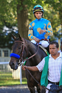 A Z Warrior (Bernardini) and jockey Alan Garcia go to the post for the Frizette Stakes at Belmont Park 10/9/10 JH.