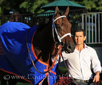Uncle Mo (Indian Charlie) after his win in the Champagne Stakes at Belmont Park 10/9/10 JH.