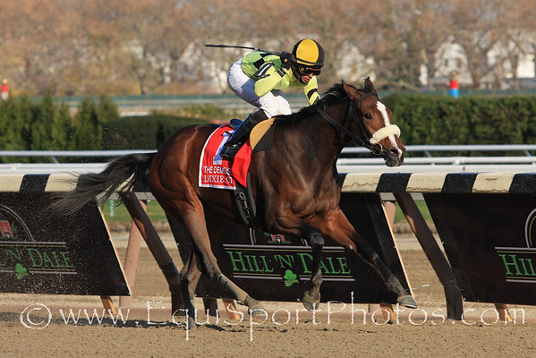 Dixie City (Dixie Union) and jockey Jose Lezcano win the Demoiselle Stakes at Aqueduct 11/27/10 JH.