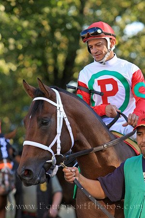 Mountain Town (Cape Town) and jockey Cornelio Velasquez go to post for the Champagne Stakes at Belmont Park 10/9/10 JH.