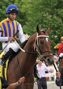 Astrology (A.P. Indy) and jockey Alan Garcia go to post for a maiden race at Saratoga Racecourse 9/4/10 JH.