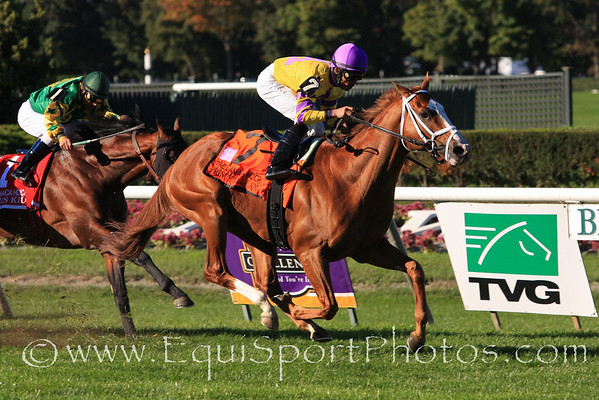 Prince Will I Am (Victory Gallop) and jockey Jose Lezcano win the Jamaica Handicap at Belmont Park 10/9/10 JH.