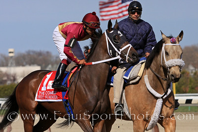 Hot Summer (Malibu Moon) and jockey Luis Saez go to post for the Comely (Gr III) for trainer David Fawkes and owner Harold L. Queen at Aqueduct Racetrack 4/9/11.