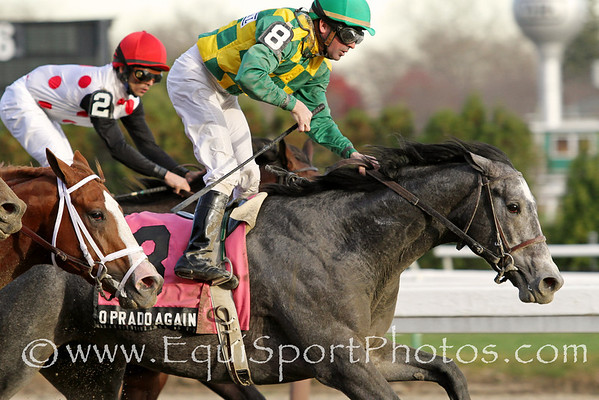O'Prado Again (El Prado) and jockey Kent Desormeaux win the Gr II Remsen Stakes at Aqueduct 11/26/11 for trainer Dale Romans and owner Donegal Racing.