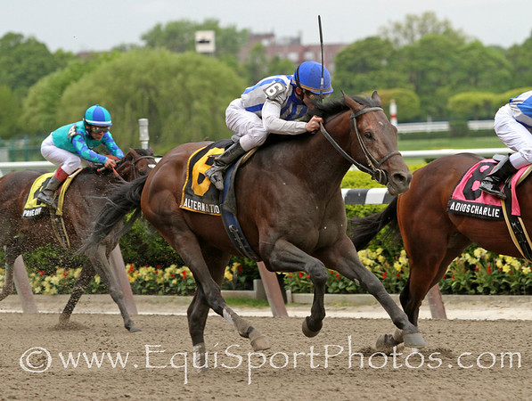Alternation (Distorted Humor) and jockey Ramon Dominguez win the Peter Pan (Gr. II) at Belmont Park 5/14/11. Trainer: Donnie Von Hemel. Owner: Pin Oak Stable