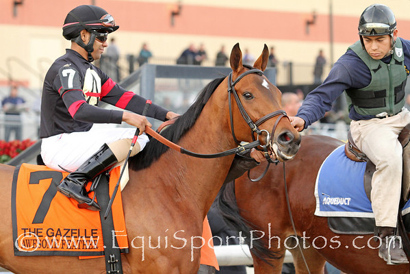 Awesome Feather (Awesome of Course) and jockey Jeffery Sanchez win the Gr I Gazelle Stakes at Aqueduct 11/26/11 for trainer Chad Brown and owner Stronach Stables.
