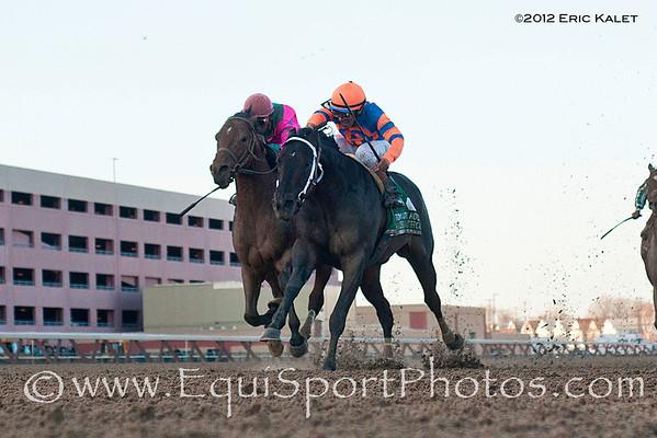 Calibrachoa (Southern Image), Cornelio Velasquez up, wins the Grade III Tom Fool Handicap Stake at Aqueduct Racetrack.