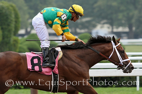 Palace Malice (Curlin) and jockey Javier Castellano win a MSW at Saratoga Racecourse 8/4/12. Trainer: Todd Pletcher. Owner: Dogwood Stable